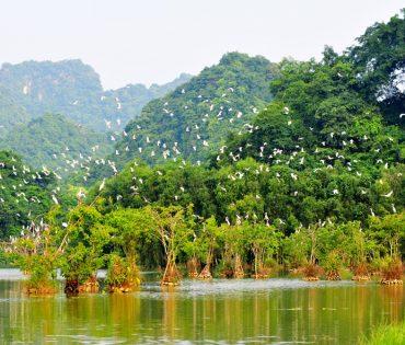 Thung Nham Bird Valley